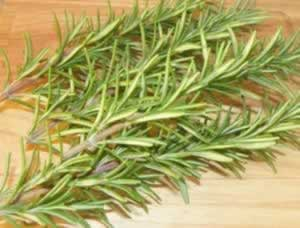 Rosemary Herb Oil Benefits