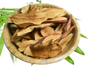 Reishi Mushroom Ganoderma Coffee Benefits