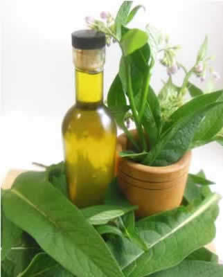 comfrey oil Herbal Remedies